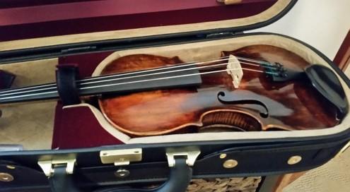 Violin Pavel
